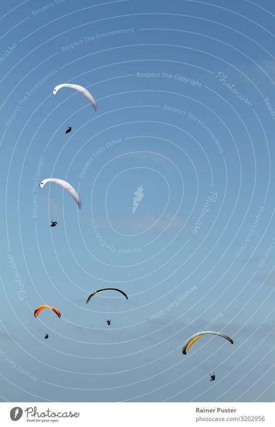 Fünf Paraglider gleiten durch die Luft Ferien & Urlaub & Reisen Sommerurlaub Gleitschirmfliegen 5 Mensch Himmel Wolkenloser Himmel Schönes Wetter Küste