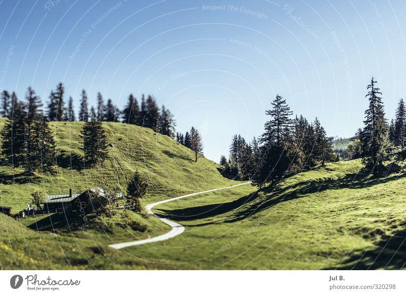 Bayern Mountain Natur Landschaft Luft Himmel Sonne Schönes Wetter Wärme Baum Gras Alpen Stimmung Abenteuer Kraft Leben Farbfoto Außenaufnahme Tag