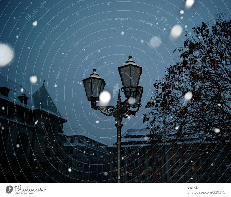Nach dem Schnee ist vor dem Schnee Himmel Stadt blau weiß Baum Haus Winter dunkel schwarz kalt Bewegung Schneefall glänzend Wetter frei elegant