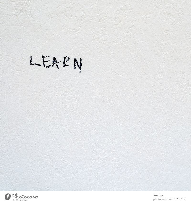 LEARN Bildung lernen Studium Mauer Wand Schriftzeichen hell weiß Schwarzweißfoto Außenaufnahme Nahaufnahme Menschenleer Textfreiraum rechts Textfreiraum oben