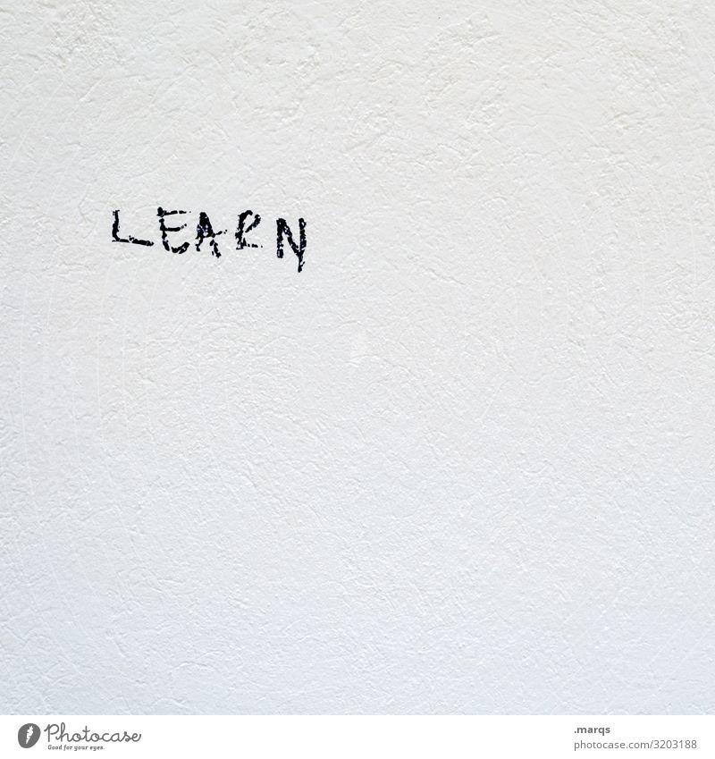 LEARN weiß Wand Mauer Schriftzeichen lernen Studium Bildung