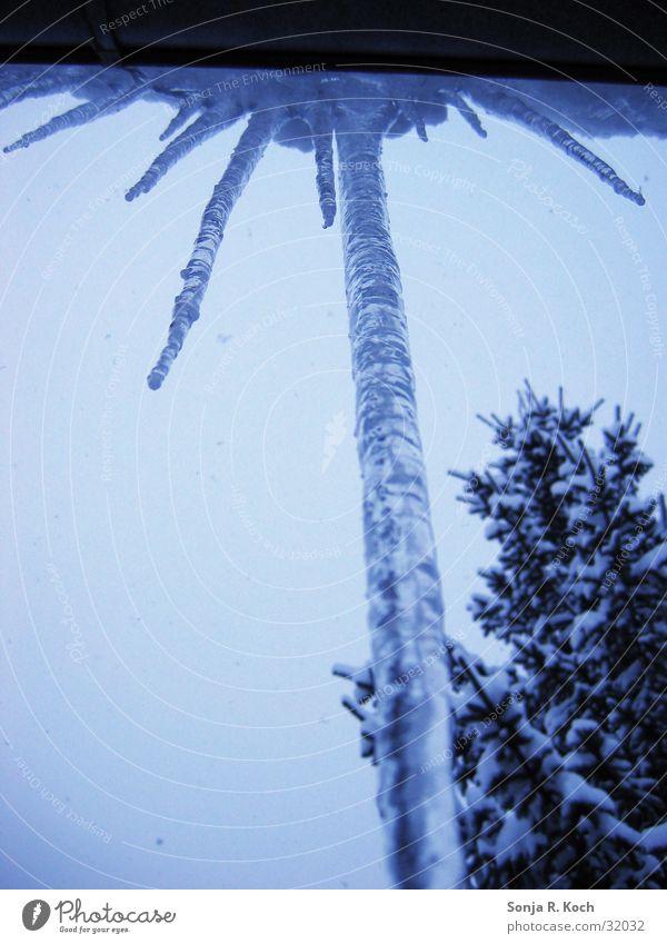 Eiszapfen I Wasser Winter kalt Schnee Eis gefroren Eiszapfen