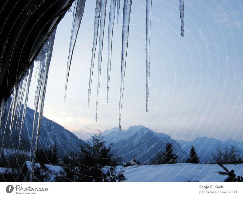 Eiszapfen II Wasser Winter kalt Schnee Berge u. Gebirge gefroren