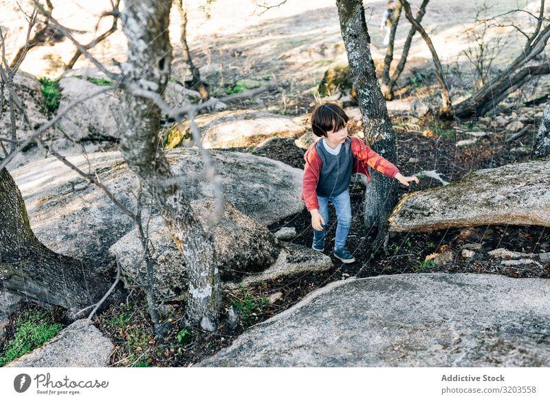 Kleiner Junge geht auf einem felsigen Hügel Natur erkunden Wald Felsen Kind Kindheit Aktion träumen Park Fundstück Ferien & Urlaub & Reisen Unbekümmertheit