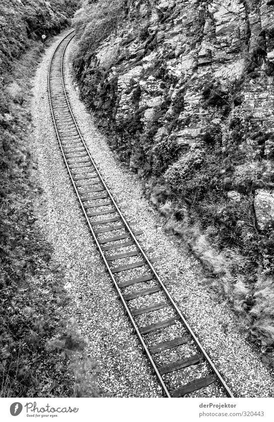 Es geht ein Gleis nachnirgendwo Landschaft Verkehr Verkehrsmittel Verkehrswege Öffentlicher Personennahverkehr Bahnfahren Schienenverkehr Eisenbahn Personenzug