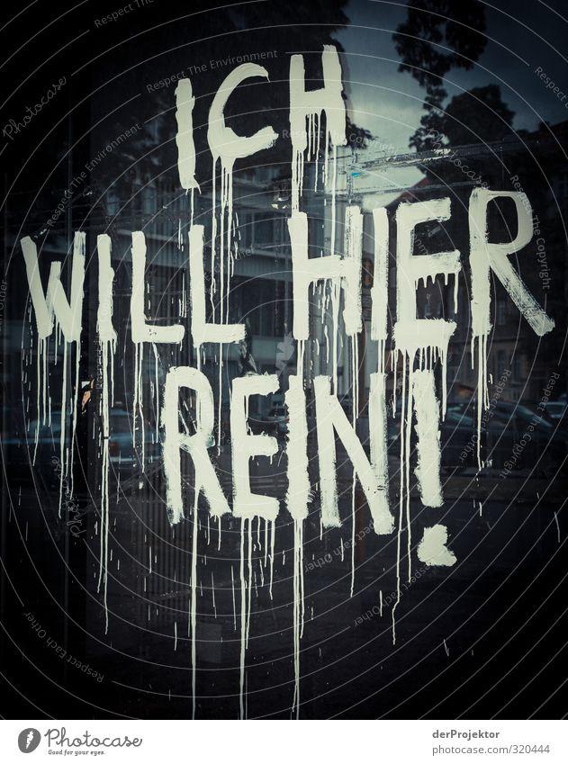 Ich nich. Kunst Kunstwerk Hauptstadt Stadtzentrum Menschenleer Fenster Sehenswürdigkeit Zeichen Schriftzeichen Graffiti Aggression alt Billig gut hässlich