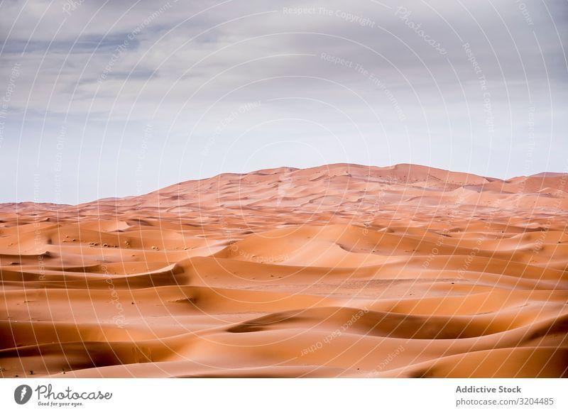 Sanddünen in der Wüste Sahara Dunes Marokko Landschaft Natur Afrika Tourismus Ferien & Urlaub & Reisen Orange Hintergrundbild Außenaufnahme arabisch regenarm