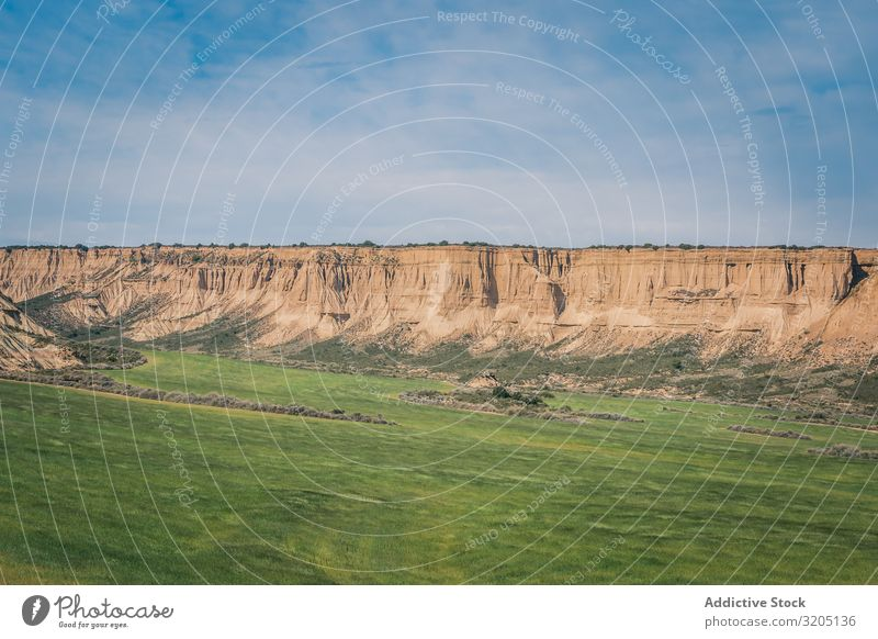 Wüstenlandschaft mit grüner Vegetation auf blauem Himmelshintergrund Landschaft Sand Pflanze Ausflug regenarm Natur Ferien & Urlaub & Reisen heiß Düne Tourismus