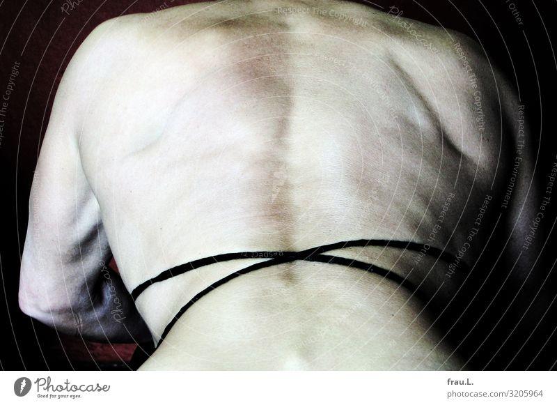 Rücken Sport Fitness Sport-Training Frau Erwachsene 1 Mensch 45-60 Jahre ästhetisch sportlich muskulös dünn Kraft Willensstärke Stolz Bodybuilding Farbfoto Tag