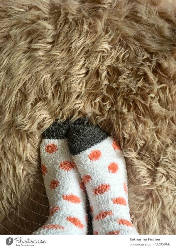 Socken flauschig Fell Fuß Winter stehen Wärme braun grau orange weiß Strümpfe heizen kuschlig Fleck weich Kuscheln Farbfoto Innenaufnahme Tag