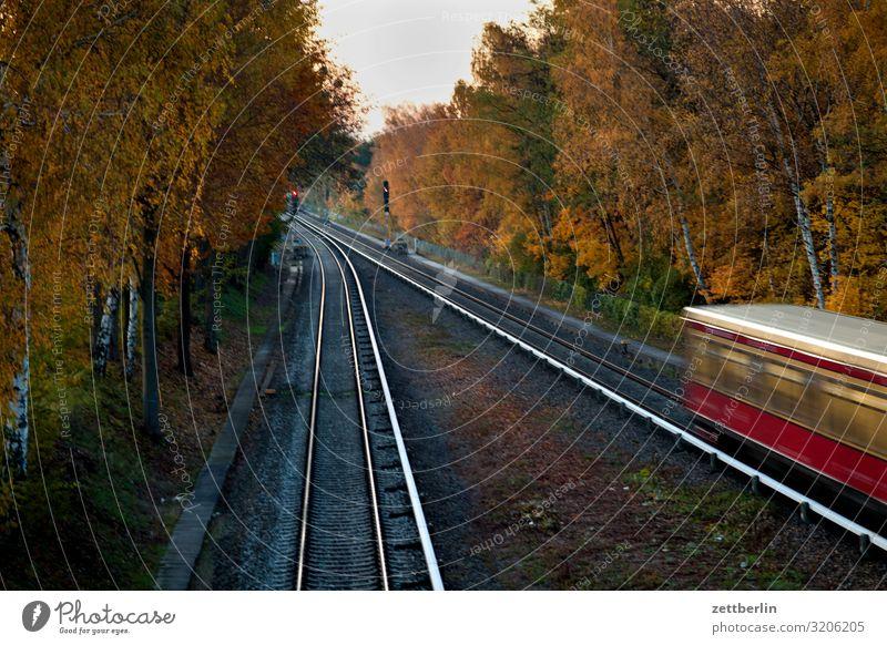S-Bahn nach Teltow Abend Bahnhof Dämmerung Öffentlicher Personennahverkehr Gleise Stadt Güterverkehr & Logistik Personenverkehr Stadtleben Verkehr Feierabend