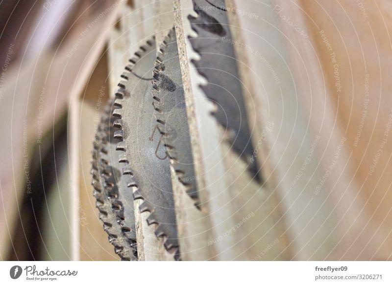 Tischlersägen in einer Holzwerkstatt Arbeit & Erwerbstätigkeit Industrie Handwerk Werkzeug Säge Zähne Accessoire Metall Stahl weiß gefährlich Zimmerer