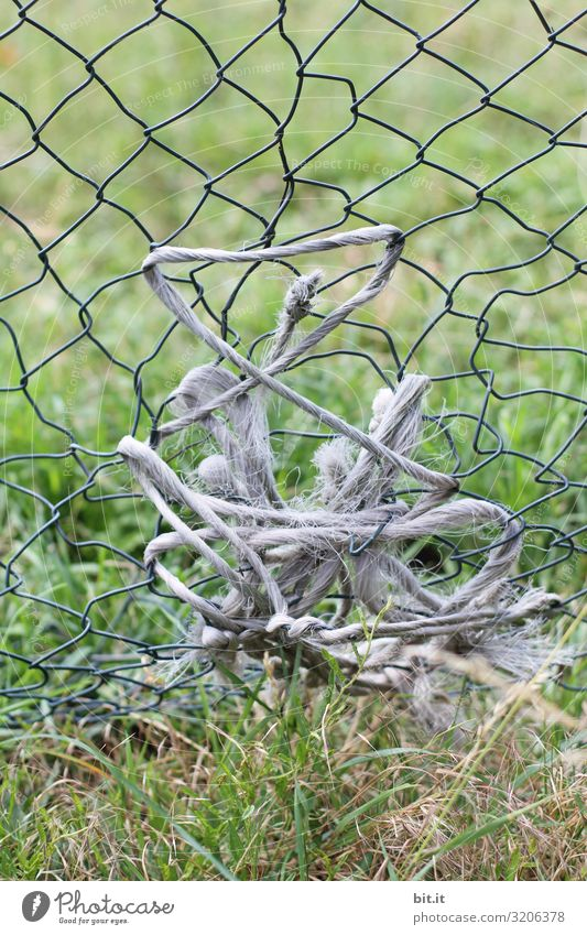 Alte Schnur, Seil gewickelt im kaputten Zaun, Maschendrahtzaun, um ein Loch zu flicken, vor einer Wiese in der Natur, auf einer Viehweide. Gras grün Weide Feld
