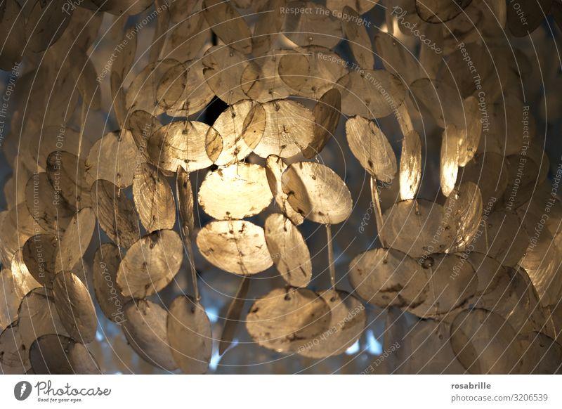 Lichtspiel aufgehängte Perlmuttkreise | Trash 2020 Kreise Scheiben Windspiel Beleuchtung schimmern Formen Strukturen abstrakt Hintergrund Mobile irisierend