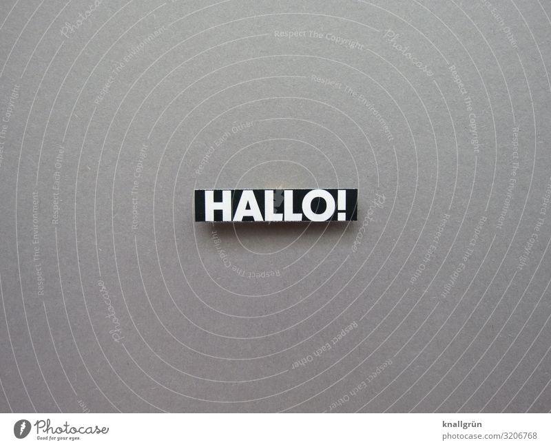 Hallo! Begrüßung Gruß Kommunizieren Freundlichkeit Wort Schriftzeichen Sprache Buchstaben Typographie Lateinisches Alphabet Menschenleer Letter Text