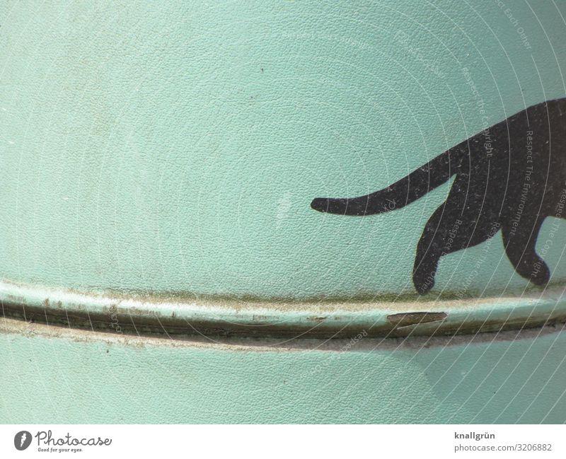 Auf leisen Sohlen... Tier Haustier Katze 1 Metall Graffiti gehen grün schwarz schwarze Katze Rost Eisenrohr laufen Farbfoto Außenaufnahme Menschenleer