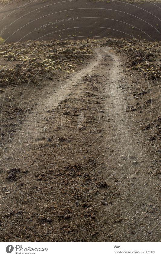 unbefestigt Natur Erde Moos Felsen Wege & Pfade braun Fahrbahn Stein Farbfoto Gedeckte Farben Außenaufnahme Menschenleer Tag