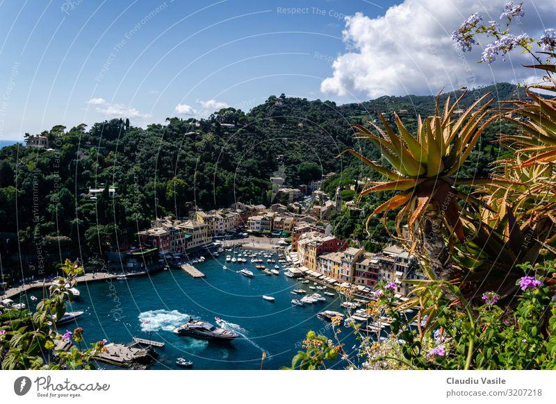 Portofino, vom Schloss Braun aus gesehen Ferien & Urlaub & Reisen Tourismus Ausflug Sightseeing Sommer Sommerurlaub Sonne Pflanze Agave Bootsfahrt Jacht