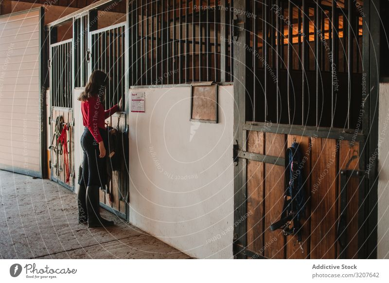 Frau im Pferdestall stehend Verkaufswagen Beruf Ranch Reiterin Pflege Streicheln professionell scherzhaft ländlich Landschaft Arbeit pferdeähnlich Bauernhof