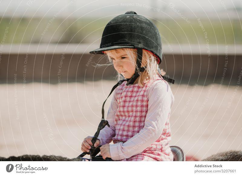 Kleines Mädchen reitet Pferd auf dem Hippodrom Sport Mitfahrgelegenheit Porträt Rennbahn Reiterin Kind üben Kindheit lernen bezaubernd wenig Jockey ländlich