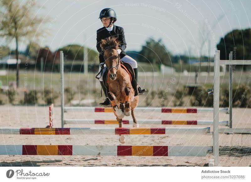 Mädchen reitet Pferd und springt über Stangen Frau springen Bar Rennbahn Mitfahrgelegenheit Sport Tier Reiterin Training aktiv Sprung vorbei Pferderücken
