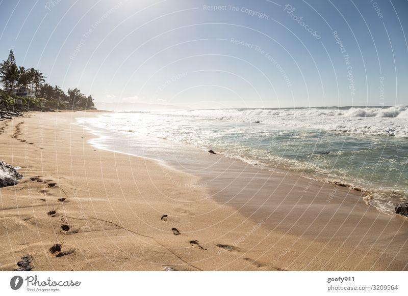Strandfeeling Ferien & Urlaub & Reisen Tourismus Ausflug Abenteuer Ferne Freiheit Sommer Sonne Sonnenbad Meer Insel Wellen Natur Sand Wasser Himmel