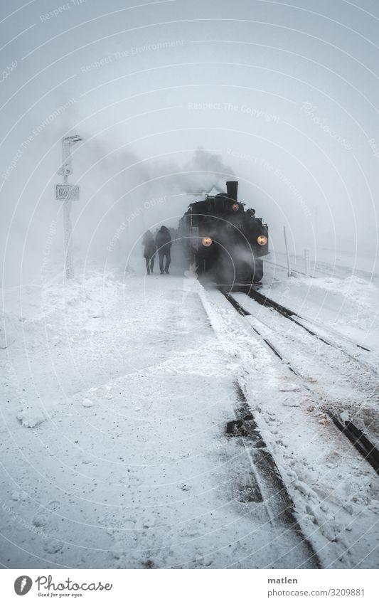 Winterzeit weiß Landschaft schwarz kalt Schnee grau Schneefall Verkehr Eis Wind Eisenbahn Frost Gleise Verkehrswege Personenverkehr schlechtes Wetter