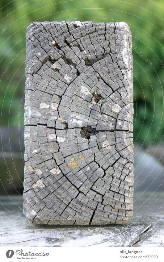 wo möglich holz Holz braun Holzbrett Freiburg im Breisgau Seepark