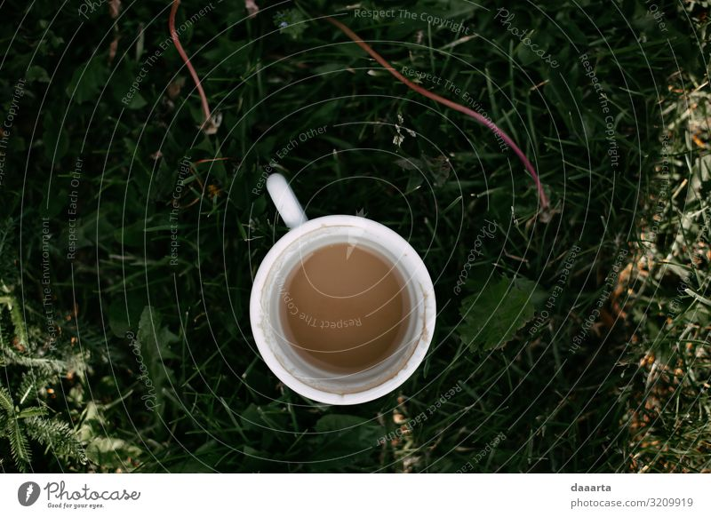 Kaffeesommer Getränk Heißgetränk Latte Macchiato Becher Lifestyle Stil Freude Leben harmonisch Freizeit & Hobby Abenteuer Freiheit Sommer Sommerurlaub