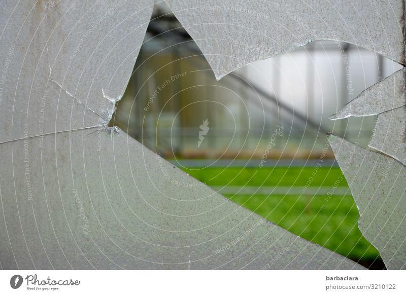 Vorsicht, scharf! | gewaltsamer Einblick Gartenarbeit Gärtnerei Landwirtschaft Forstwirtschaft Gebäude Gewächshaus Fassade Fenster Glas Linie Blick eckig kaputt