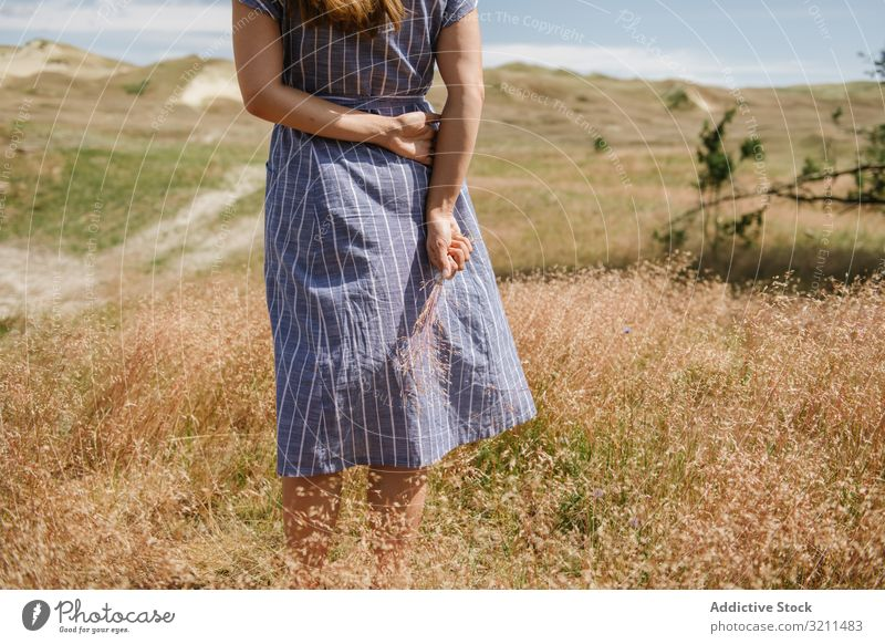 Junge Frau sammelt getrocknete Stacheln Feld Gras Landschaft sich[Akk] sammeln gold Kleid Wölkchen stehen Spitze Freiheit Sonnenschein Sommer ländlich nida
