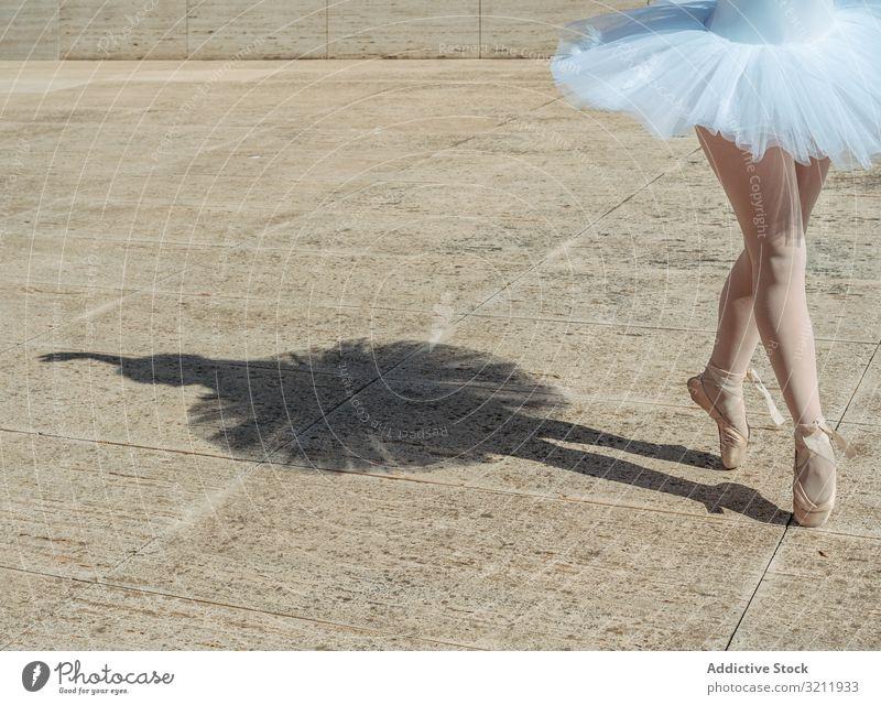 Ballerina auf Zehenspitzen stehend klassische Position außen Schatten Tanzen Eleganz Tänzer Flexibilität Balletttänzer posierend Übung schön Frau Gleichgewicht