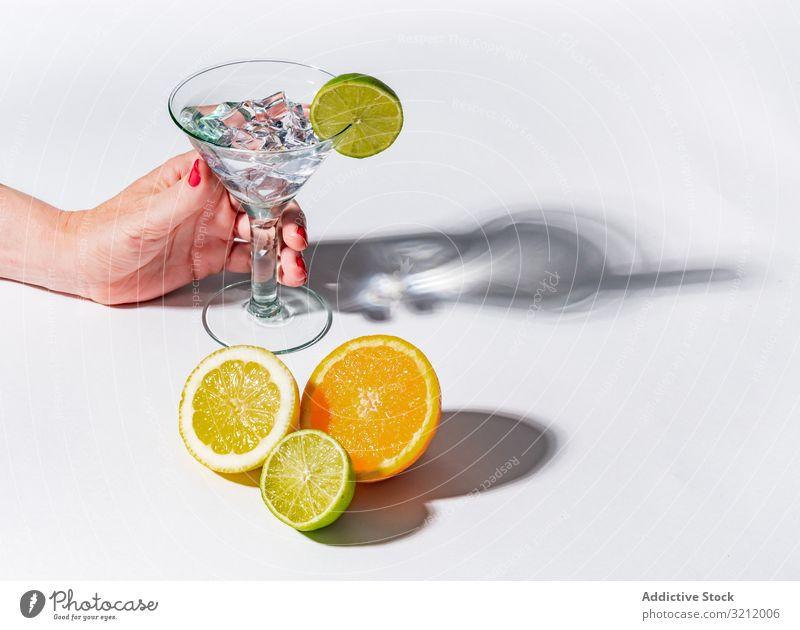 Cocktailglas mit Eiswürfeln und geschnittenen Zitrusfrüchten Glas trinken orange Erfrischung Zitrone Kalk Frucht Frische Schatten Getränk cool Entzug grün