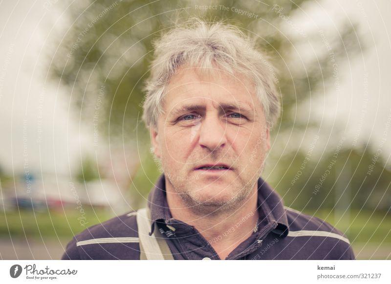 Frontal Lifestyle Mensch maskulin Mann Erwachsene Senior Leben Kopf Haare & Frisuren Gesicht 1 45-60 Jahre Polohemd grauhaarig Dreitagebart Blick authentisch