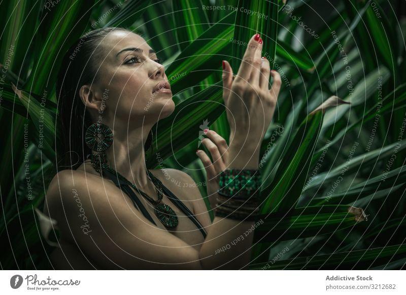 Schöne Frau in grünen Blättern matt Freizeit schön attraktiv luxuriöses Körper jung Lifestyle Model Urlaub Vergnügen sportlich Genuss reisen Erholung sinnlich