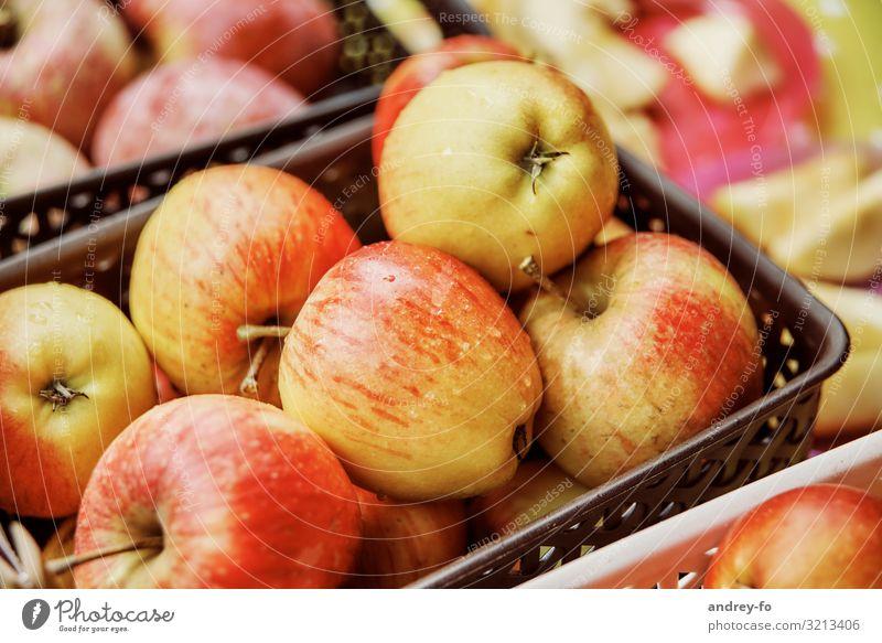 Äpfel im Korb Pflanze entdecken Erfolg Erwartung Apfel Apfelfrucht reif Gesundheit lecker allstar rot gelb Gesunde Ernährung Frucht Ernte Farbfoto Außenaufnahme