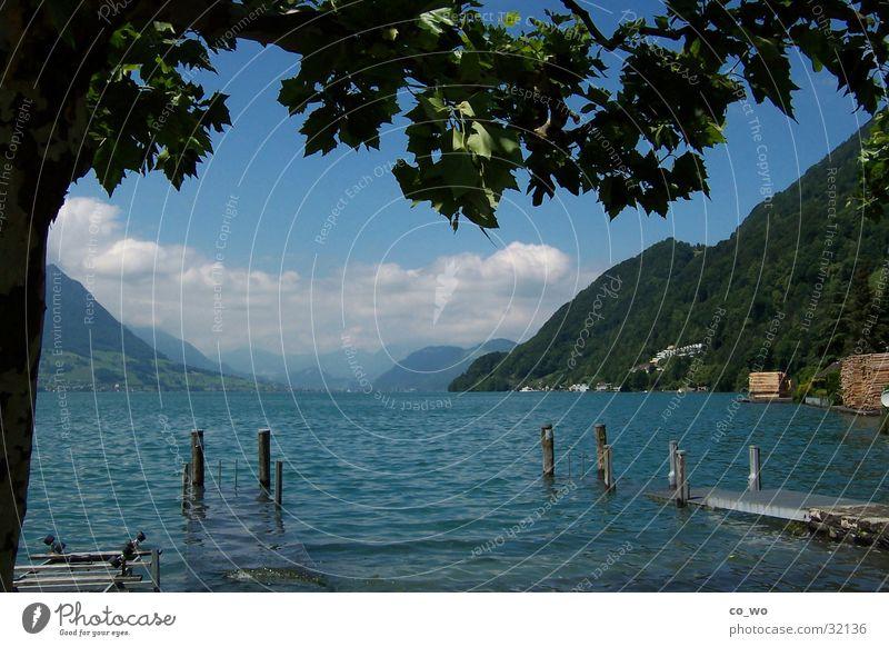 Traumblick Natur Wasser See Aussicht traumhaft Gebirgssee