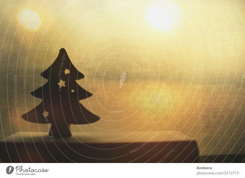 Weihnachtsdekoration mit Tannenbaum im goldenen Gegenlicht Feste & Feiern Weihnachten & Advent leuchten gelb schwarz Weihnachtsbaum Dekoration & Verzierung