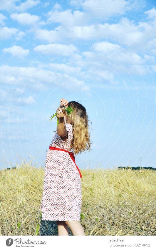 mädchen auf einem sommerlichen strohfeld mit gräsern in der hand, seitlich betrachtet Kind Mädchen Sommer Kleid Strohfeld Getreidefeld Blick brav Körperhaltung
