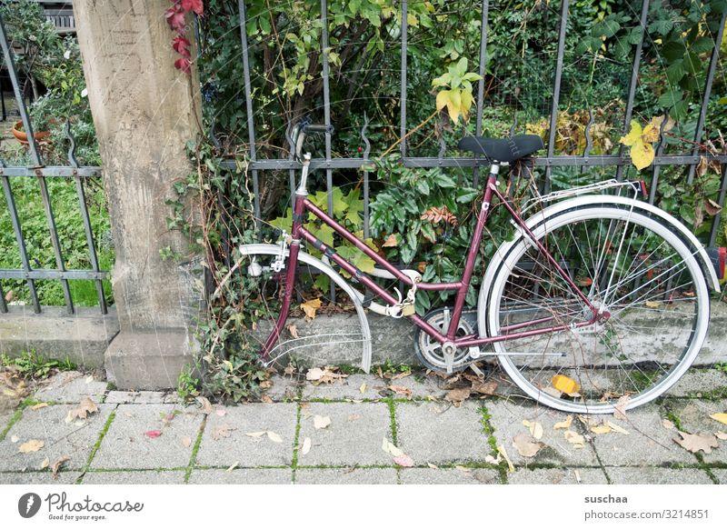 ratenklau Fahrrad schließen Sicherheit unsicher entwenden abmontieren Stadt Stadtleben alt vergessen Rad vermissen Gärtchen Gartenzaun Fahrradschloss