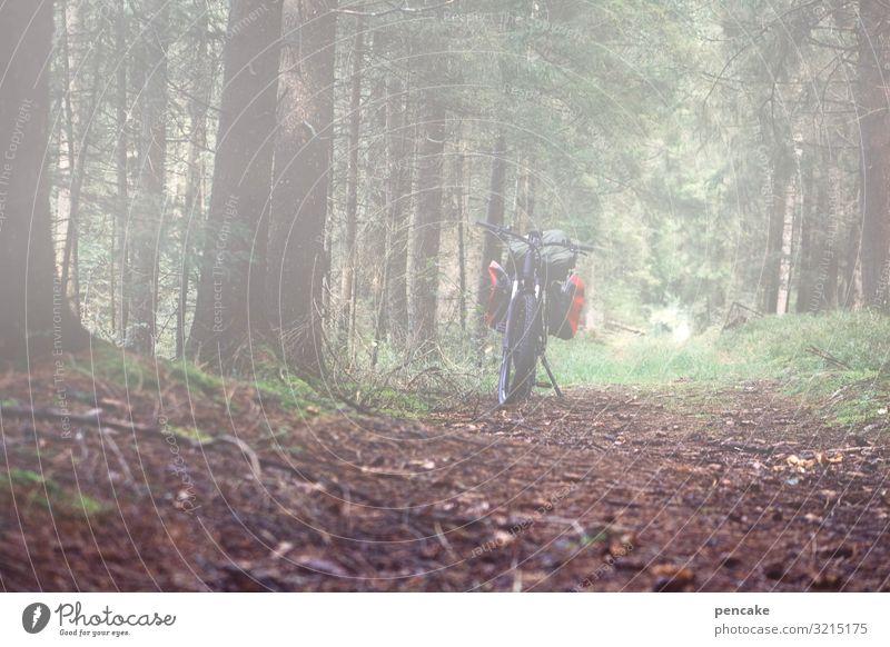 unscharf | benebelt Natur Landschaft Urelemente Erde Herbst Nebel Wald Wege & Pfade Fahrrad Mobilität e-bike elektrisch E-Mobilität Pause Ausflug Fahrradtour
