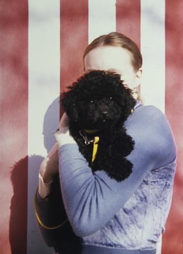 Alter Ego feminin Frau Erwachsene 1 Mensch Hemd blond Zopf Tier Haustier Hund Tiergesicht Pudel Markise Streifen beobachten berühren festhalten Blick