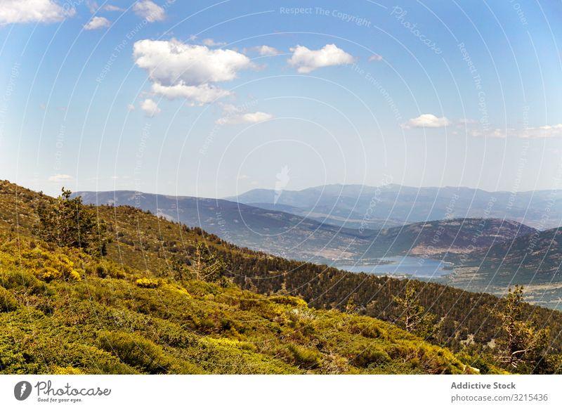 Malerische Aussicht auf schöne grüne Hügel malerisch Ansicht Blume blau wolkenlos Himmel Natur Landschaft Wiese idyllisch Blüte Überstrahlung Sommer ländlich