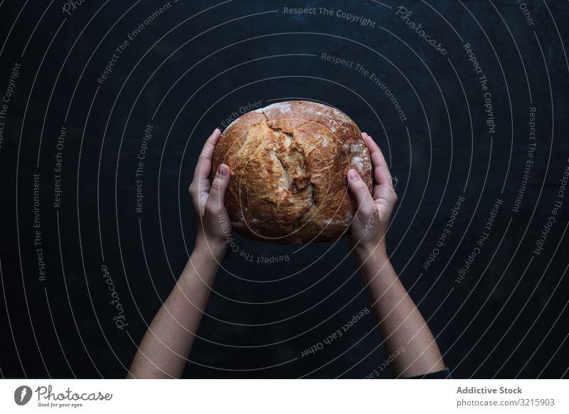 Frisch gebackenes Roggenrundbrot in Händen Brot Brotlaib handgefertigt traditionell Weizen frisch aromatisch Lebensmittel selbstgemacht braun lecker Mahlzeit