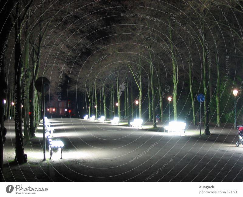 Strahlenweg01 Lampe Wege & Pfade Park Architektur sitzen Bank Laterne