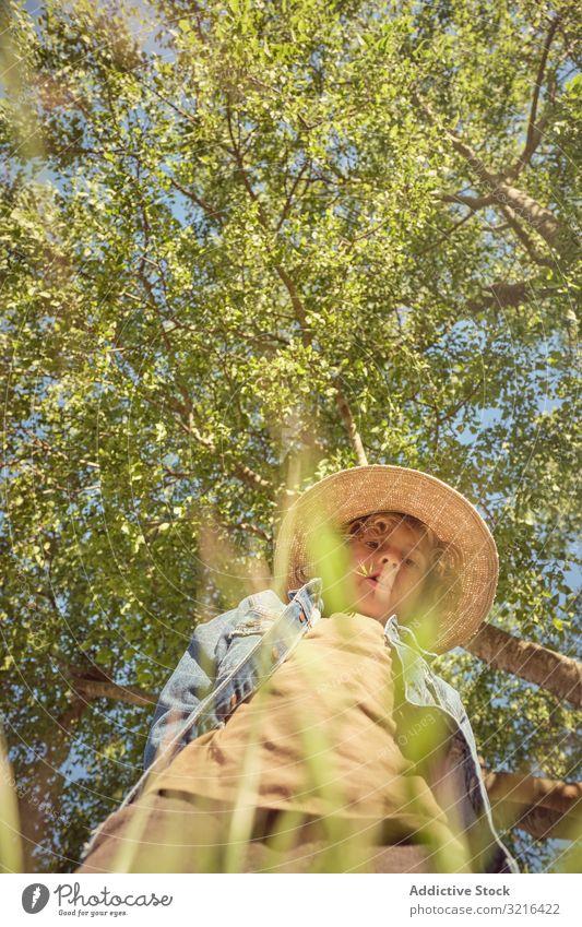 Junge mit Hut im langen Gras sitzend nachdenklich Landschaft Kind wenig Kindheit Spaß lässig Natur Sommer Wiese lustig aktiv Freiheit Licht Park bezaubernd