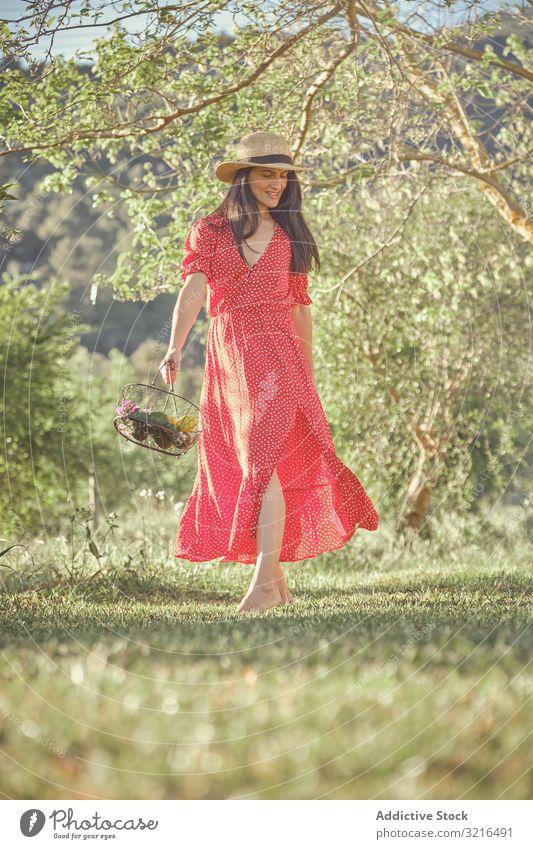 Frau in rotem Kleid im Sommergarten mit Obstkorb heiter Korb attraktiv laufen Früchte jung schön Lifestyle frisch natürlich organisch grün Natur Vegetarier