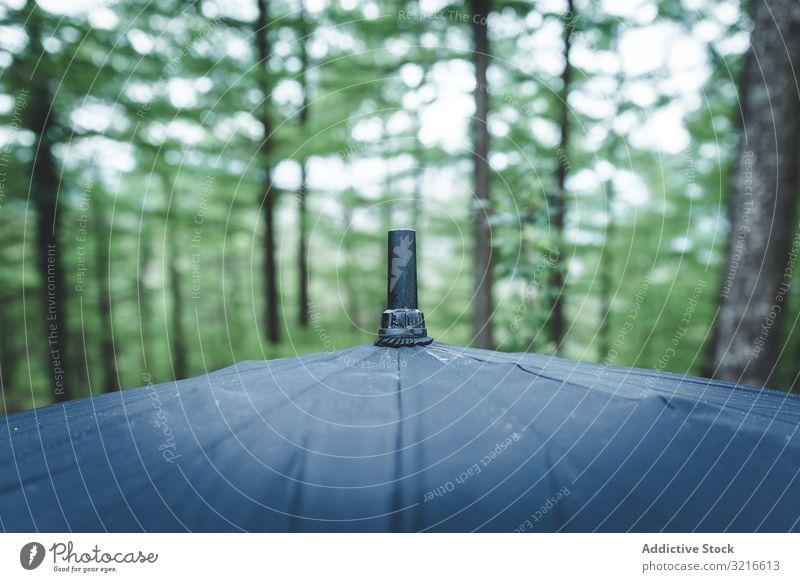 Teil eines nassen Regenschirms gegen grüne Bäume Baum Tipp Wald Tag Natur Park Wetter Wasser Spaziergang Saison schön Laubwerk Sommer Pflanze Gasse Schutz