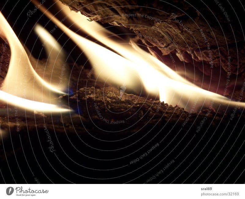 Flammen zum Ausklang brennen Grill Brand Brennendes Holz Makroaufnahme