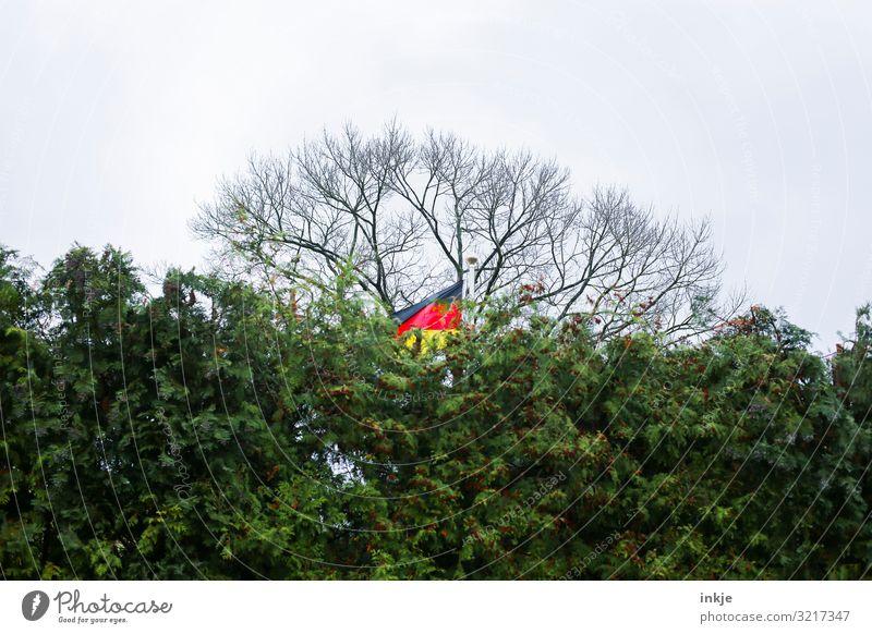 Deutschlandflagge dahinter Himmel Wolken Herbst schlechtes Wetter Baum Sträucher Hecke Streifen Fahne Deutsche Flagge grün rückwärts wehen Schrebergarten